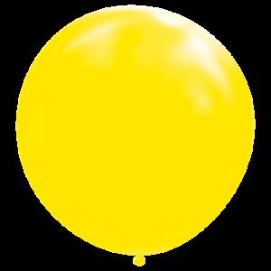 Ballonnen 180 cm Doorsnee